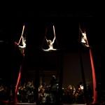 Eventi culturali Opera Lirica - Cirko Vertigo