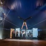 Circo Zoe