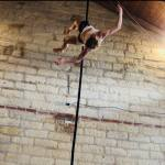 Francesca Garrone - Ikebana Ritual Performance